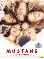 Affiche de Mustang